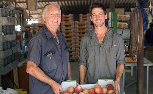 מימין אמית לאוור ואביו עופר לאוור מבנימינה, חקלאים מתמחים בפירות