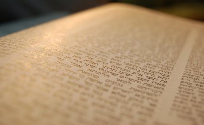 """הדף היומי: מסכת בבא בתרא דף ל""""ה יום ראשון ל' בשבט, א' דר""""ח אדר"""