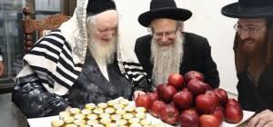 """תמונה של הראב""""ד עם בנו ר' אשר"""