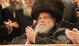 """הרבי מבעלזא: אין לכנס כעת את ה""""מועצת"""""""