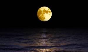 סטארט-אפ יפני רוצה להציב פרסומות על הירח