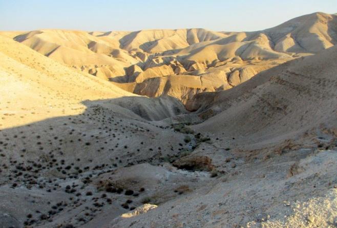 טיול למדבר יהודה דרך עדשת המצלמה