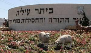 משרד הדתות במכתב אזהרה לרב העיר