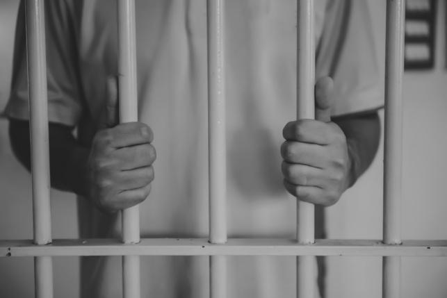 סוף גנב: ניסה לגנוב תוכי ונלכד בתוך הכלוב