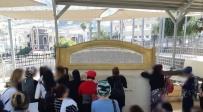 """הניצולות בציון הרמב""""ם בטבריה"""