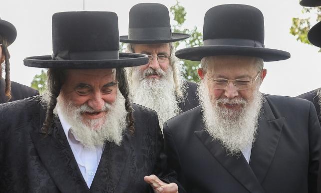 הרבי מסלונים והרבי מויז'ניץ