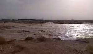 מחזה מרהיב: הנחלים בערבה חזרו לזרום • צפו