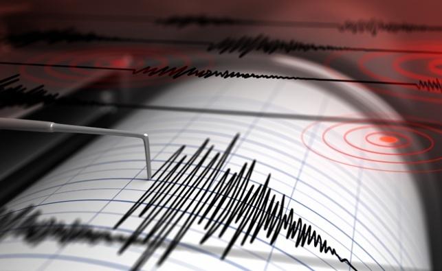 סייסמוגרף המזהה רעידות אדמה