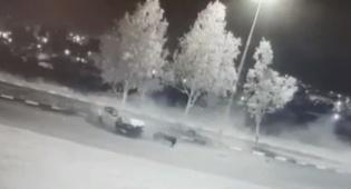 גנב רכב והתנגש בעצים במהירות רבה • צפו