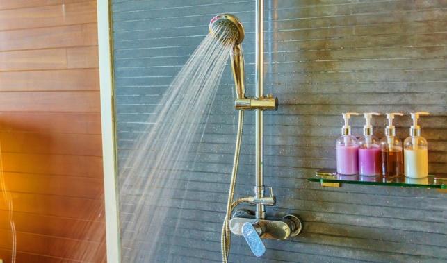 מקלחת. אתם לא חייבים לבקר בה כל יום