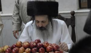 צפו: טיש התפוחים בשומרי אמונים