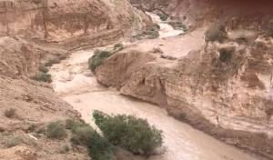 הגשמים הסוערים: צפו בזרימה בנחל אוג