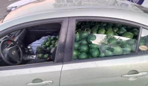 """גנב 680 ק""""ג של אבוקדו ברכב פרטי ונתפס"""