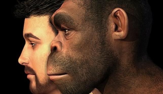 פאשלה: לפיד לא מבין באבולוציה