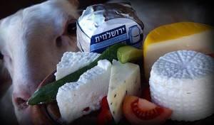 סיכון למחלות: הצד האפל של מוצרי החלב
