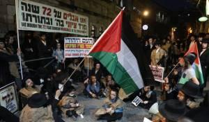 דגל פלסטין בהפגנה