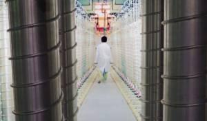 מפעל גרעיני