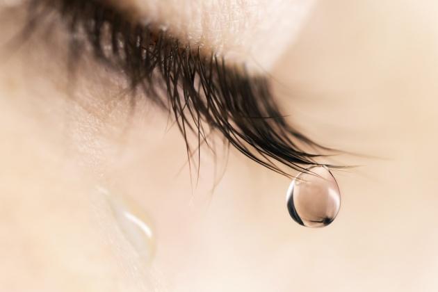 מבול של דמעות