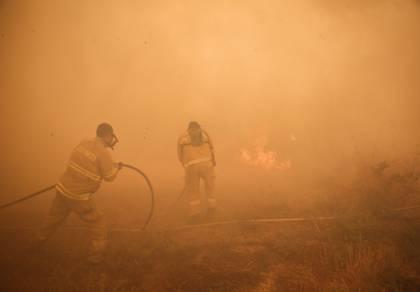 שריפות בכל הארץ; תושבים רבים פונו • צפו