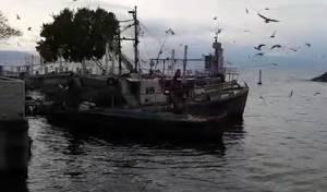 הכנרת מטפסת • צפו בזרימה החזקה בנמל