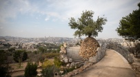 תצפית על ירושלים מקיבוץ רמת רחל