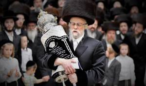 """הכנסת ספר תורה לביהמ""""ד סערט ויז'ניץ בחיפה"""