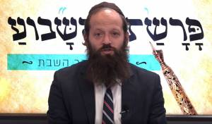 פרשת וילך עם הרב יצחק מאיר יעבץ