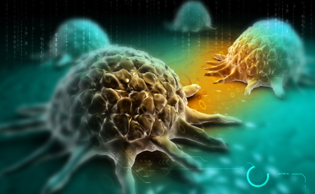 הדמייה דיגיטלית של תאי סרטן