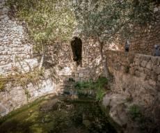 מעיין הסטף בסמוך לירושלים • גלריה