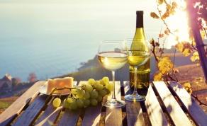 מסע מופלא בין כרמים ויין איכותי - מאחורי הקלעים של היינות המעוטרים ביותר בישראל