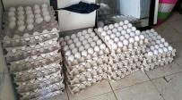 לוד: הוחרמו אלפי ביצים עם חותמת מזויפת
