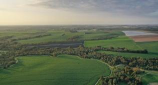 זמן פריחה: אזור דרום הארץ מכוסה ירוק