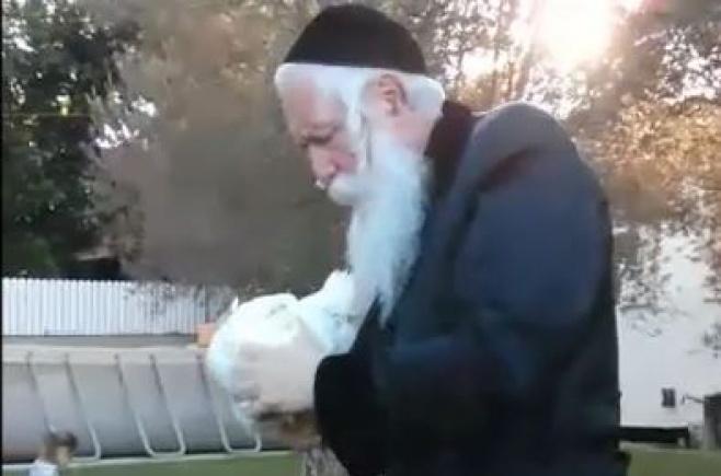 """צפו: ה""""כפרות"""" של הרב יצחק דוד גרוסמן"""