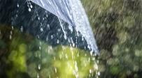 משעות הלילה: גשם יורד בצפון ובמרכז