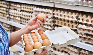 חוששים לייבא ביצים? המדינה תספק רשת ביטחון