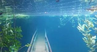 שמורת הטבע ששקעה - שמורת הטבע ששקעה כולה מתחת לפני המים