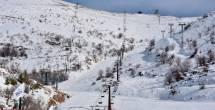 הדברים שאולי לא ידעתם על... שלג | פרק 12