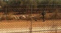 אילוסטרציה - ישראלי חצה את הגבול והסגיר עצמו ללבנון