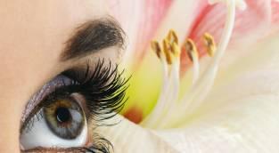 השבת תוכלי להתאפר באופן מושלם - להצליח לאפר את העיניים בצללית שלא מטילה צל