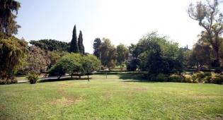 מדשאה ב מכון ויצמן ב רחובות - כך הפסידה עיריית רחובות היטל השבחה של 30 מיליון שקל