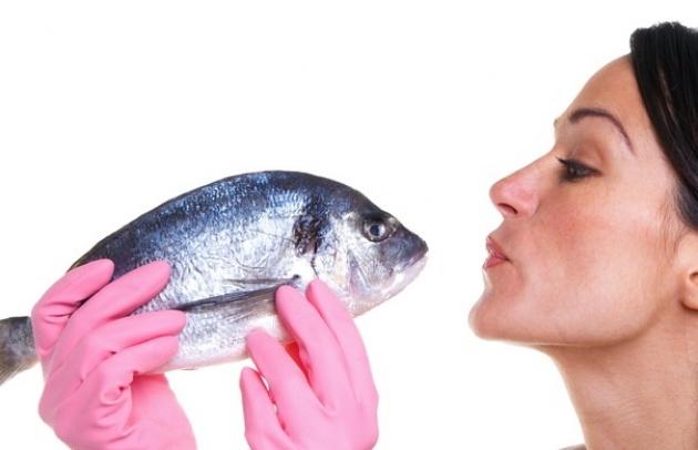 איזה דג בריא יותר? כל מה שרצית לדעת