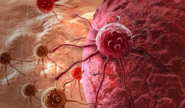 הדמיה של תאי סרטן