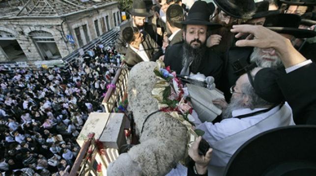 פטר חמור בירושלים. צילום: פלאש 90