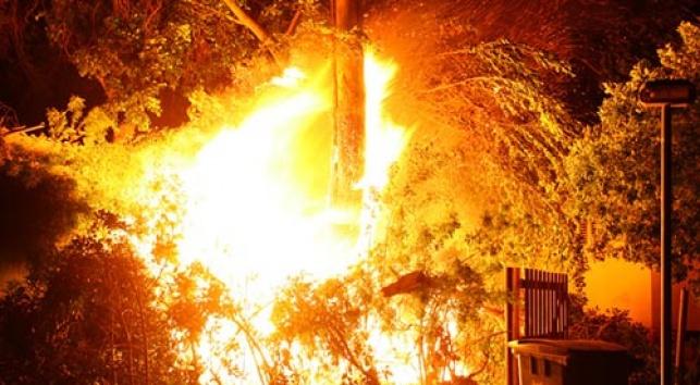 """האש בכפר-חב""""ד, אמש (צילום: י. בלינקו, COL)"""
